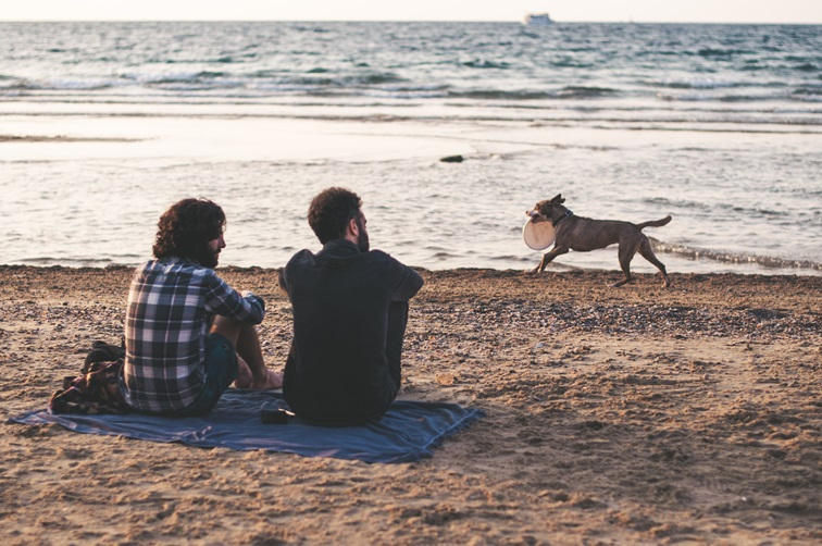 Men on a beach with a dog